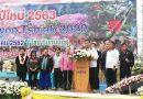 โครงการสืบสานวัฒนธรรมกลุ่มชาติพันธุ์ (ม้ง) ประจำปี 2563 วันที่ 28 – 29 ธันวาคม 2562 ณ โรงเรียนหลวงพัฒนาบ้านขุนวาง ตำบลแม่วิน อำเภอแม่วาง จังหวัดเชียงใหม่